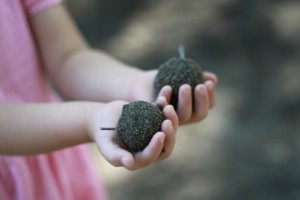 Sand ball