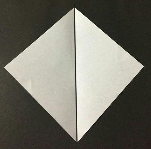 nasu.origami.2