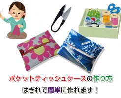 Pocket tissue case Eye-catching image