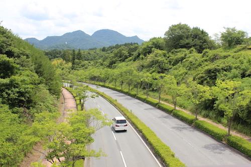 arimafuji park2