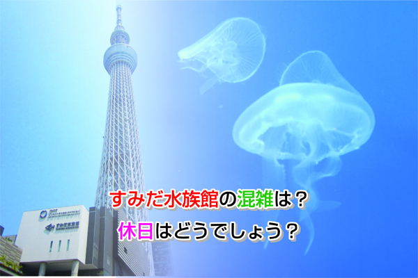 sumida aquarium Eye-catching image
