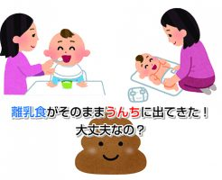 Baby Food Eye-catching image