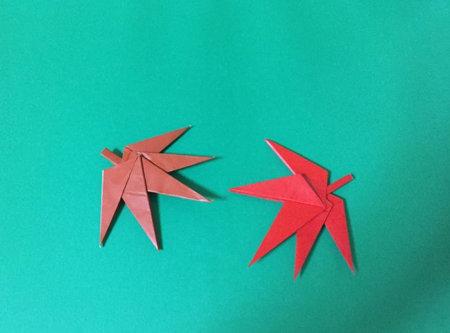momizi.origami.20