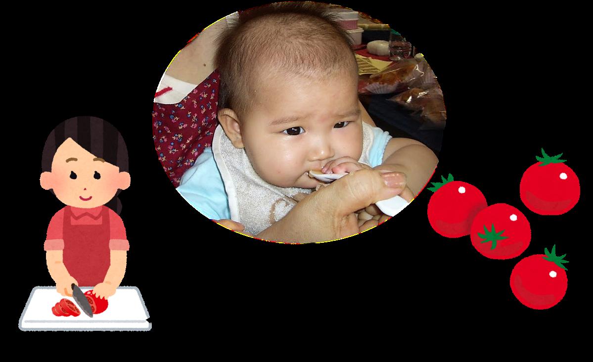 トマトの離乳食を食べさせている写真