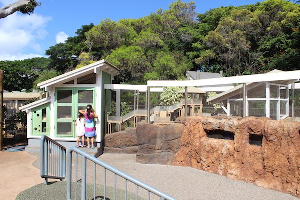 Honolulu zoo25