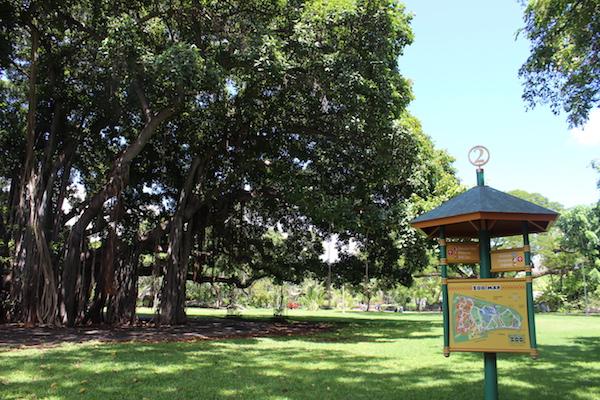 Honolulu zoo5