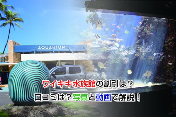 Waikiki Aquarium Eye-catching image
