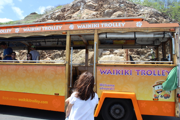 waikiki trolley bus7