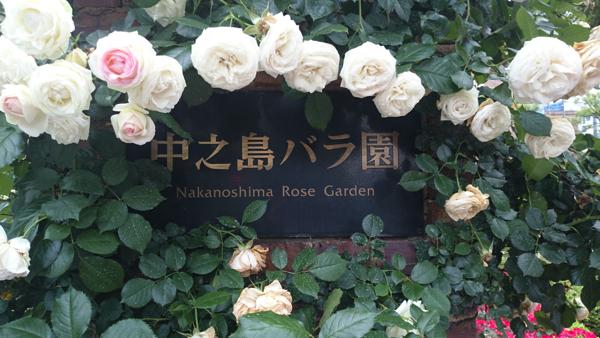 2016-05-25 07.00.39nakanoshima rose park