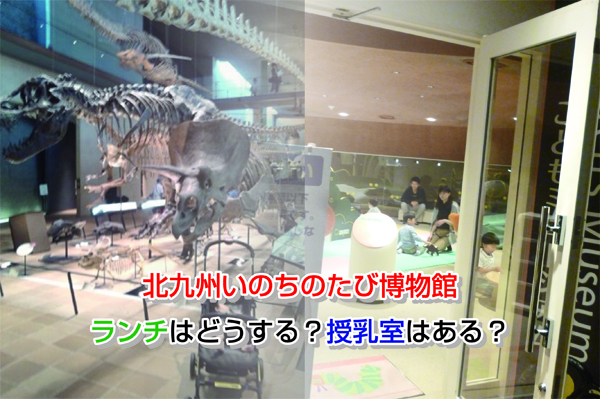 Kitakyushu Museum of Natural History & Human History Eye-catching image