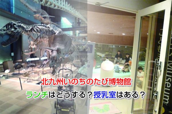 Kitakyushu Museum of Natural History & Human History Eye-catching image