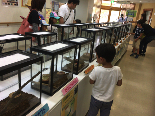 awaji-akashi-kaikyo-park045