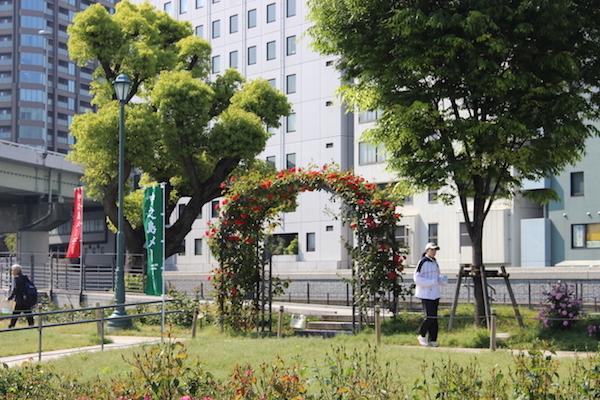 nakanoshima rose park3