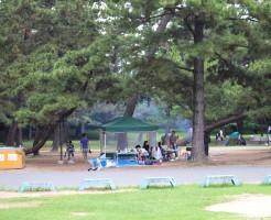 021hamadera park bbq