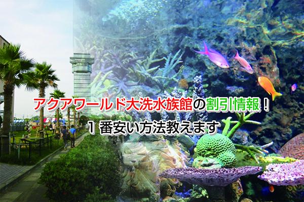 Aqua World Eye-catching image