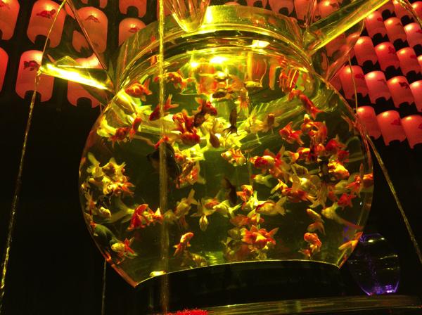 art_aquarium001