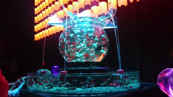 art_aquarium_osaka_2016011