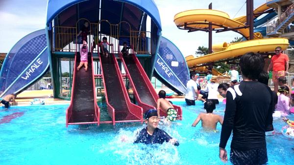 hamadera_park_pool1021