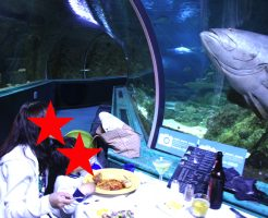 dinner_under_the_sea19
