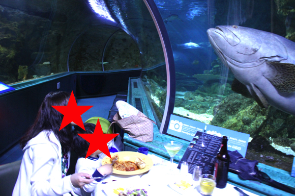 dinner_under_the_sea19