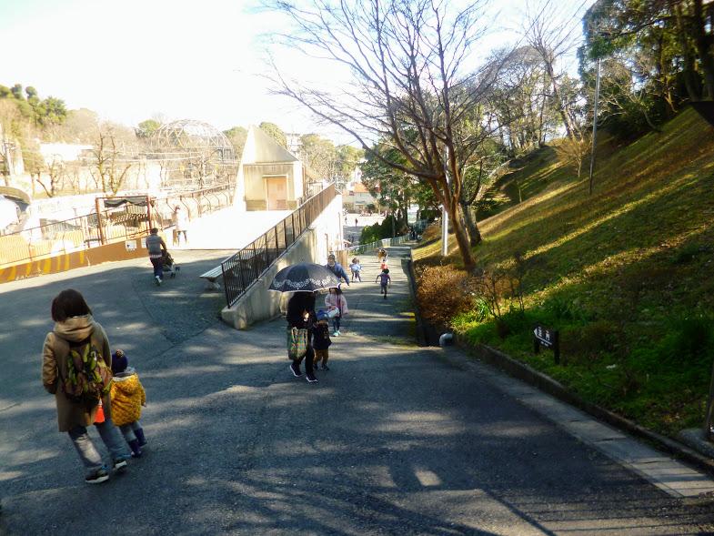 福岡市動物園の坂道2