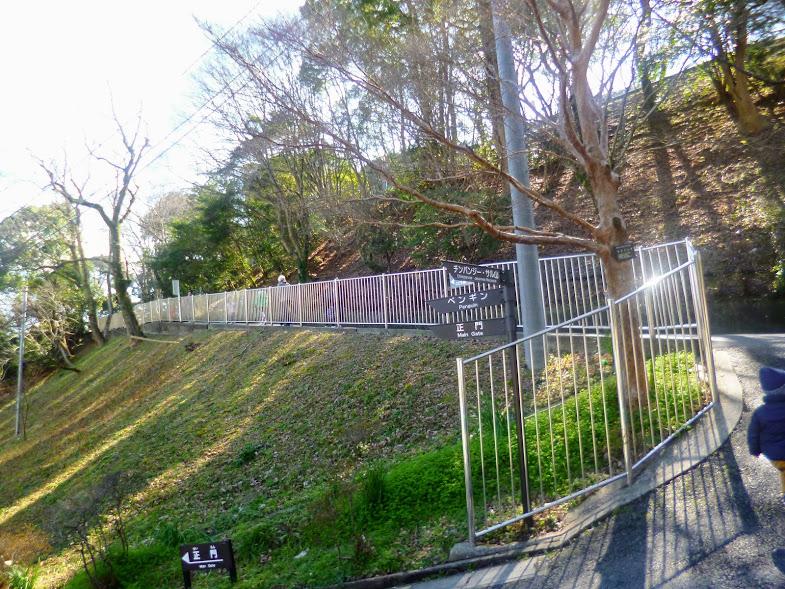 福岡市動物園の坂道