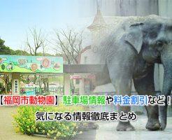 zoo fukuoka Eye-catching image