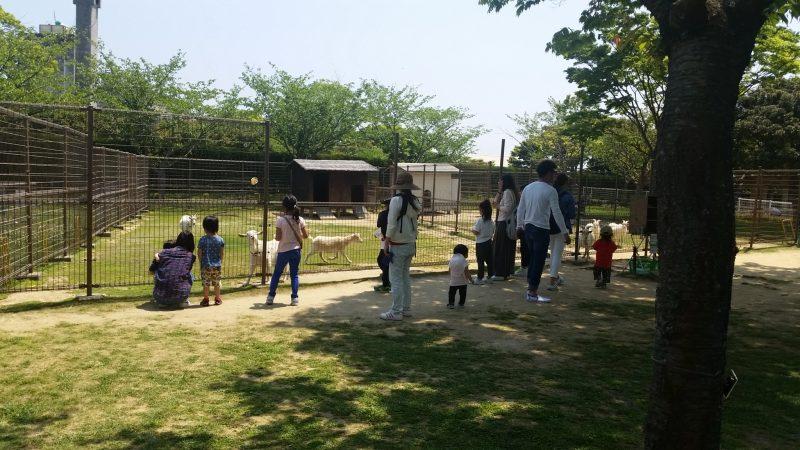 greenpark yagi