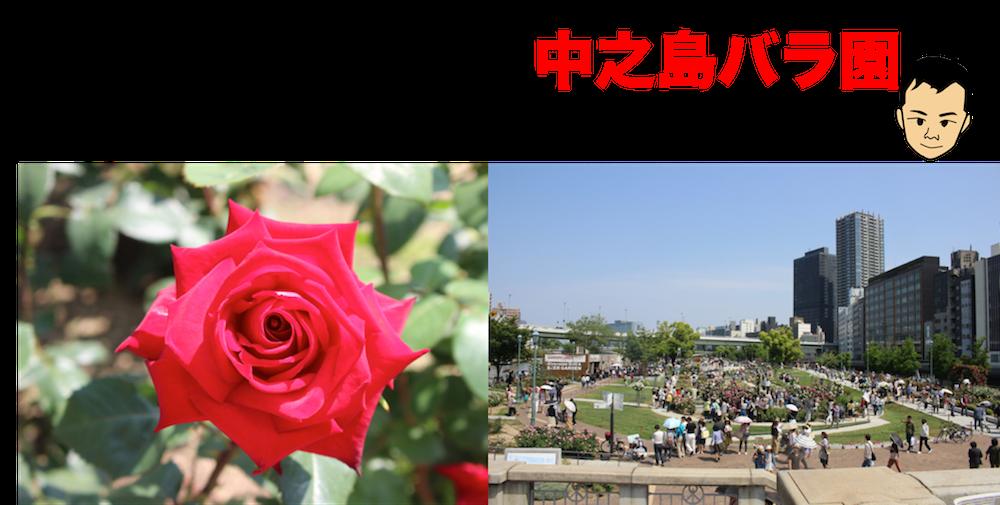 nakanoshima-rose park4