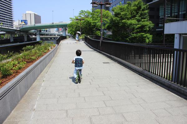 nakanoshima_rose_park019