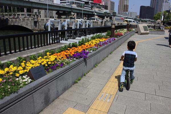 nakanoshima_rose_park028