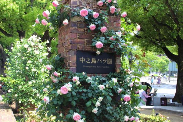 nakanoshima_rose_park045