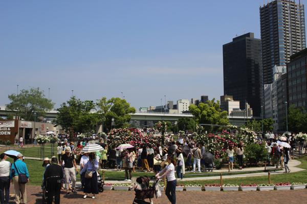 nakanoshima_rose_park064