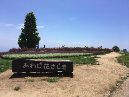awaji-hana-sajiki006