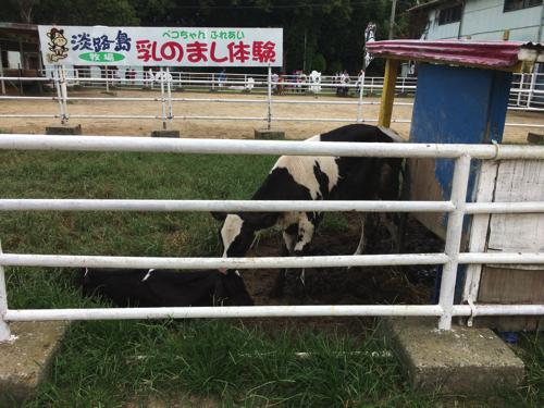 awaji_island_stock farm008
