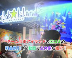 teamLab Island Eye-catching image