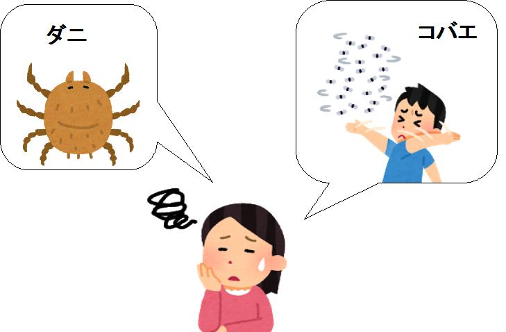 カブトムシ 飼育 害虫