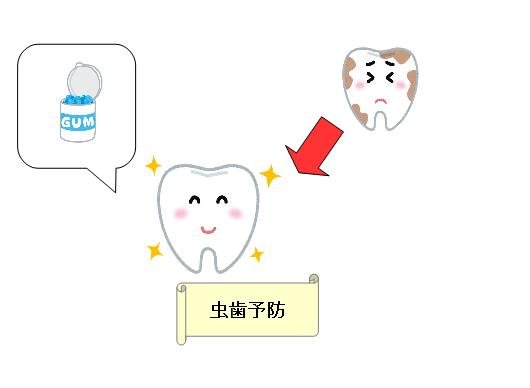 子供 ガム いつから 虫歯 予防