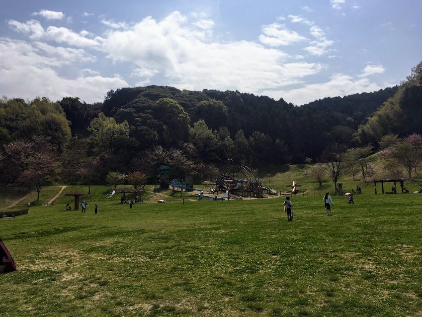 カブトの森公園の芝生広場
