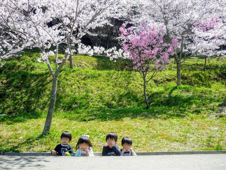 カブトの森公園で花見