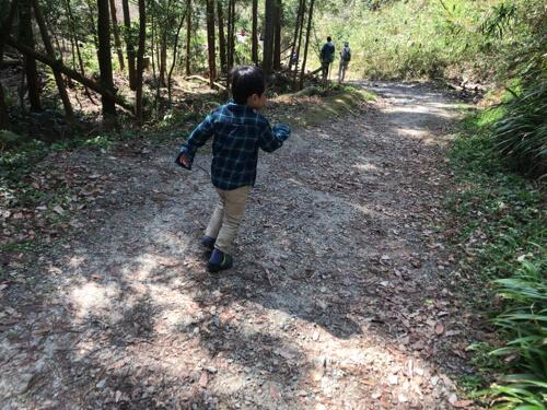むろいけ園地のハイキングの写真