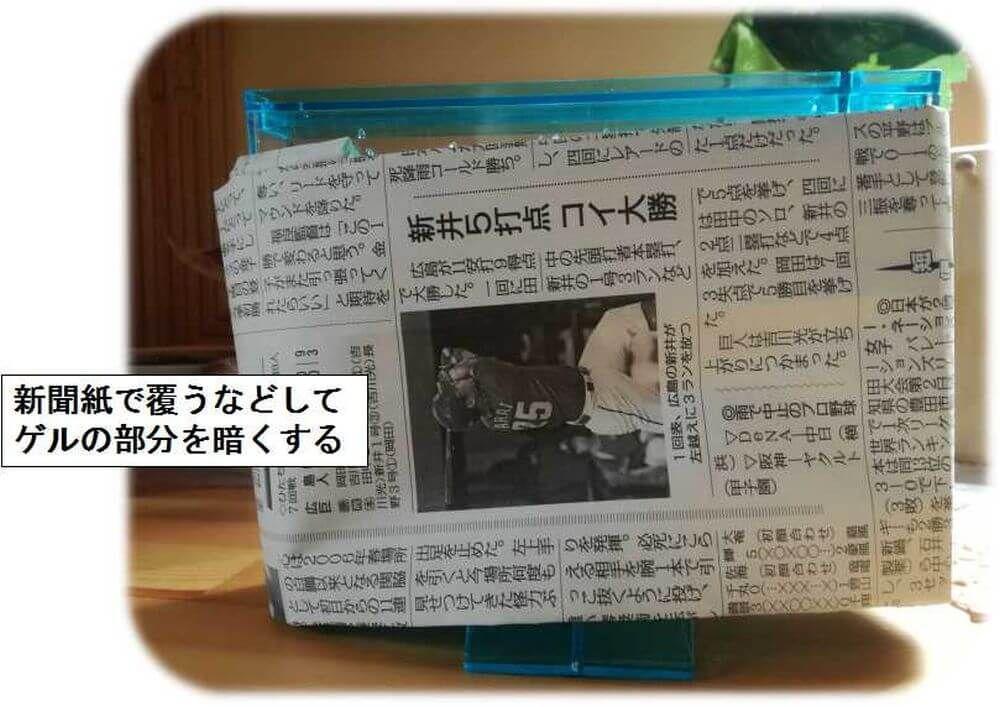 アリ飼育キット 新聞紙で覆う 暗くする