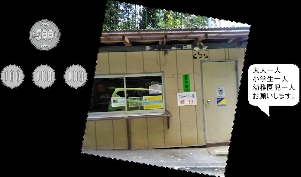 福岡でブルーベリー狩り