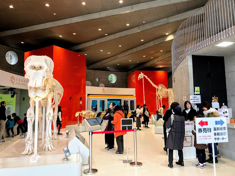 福岡市動物園のズーラボ入口すぐ